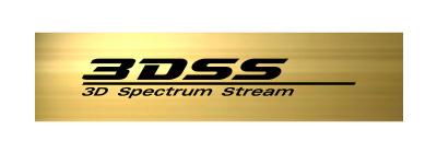 3DSS logo